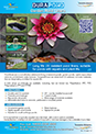 Pond liner brochure for download