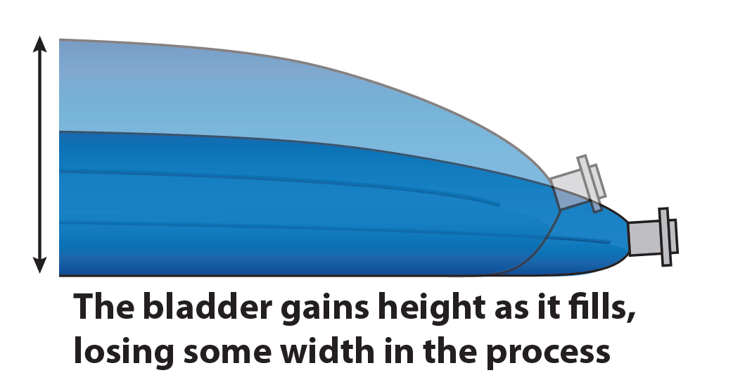 A a bladder fills, it will gain some height, but at the expense of width