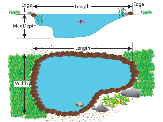 Pond Liner Calculator - measure the maximum width, length and depth and use the above calculator to work out the minimum amount of pond liner that you will need